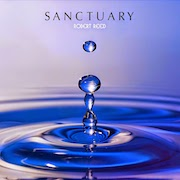 Review: Robert Reed - Sanctuary
