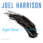 DVD/Blu-ray-Review: Joel Harrison - Angel Band – Free Country Volume 3